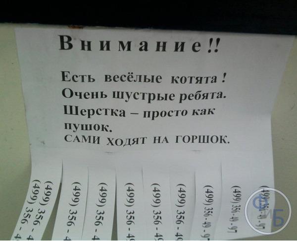 Как правильно написать объявление чтобы привлечь клиентов  образцы ... b6631d4fbcb