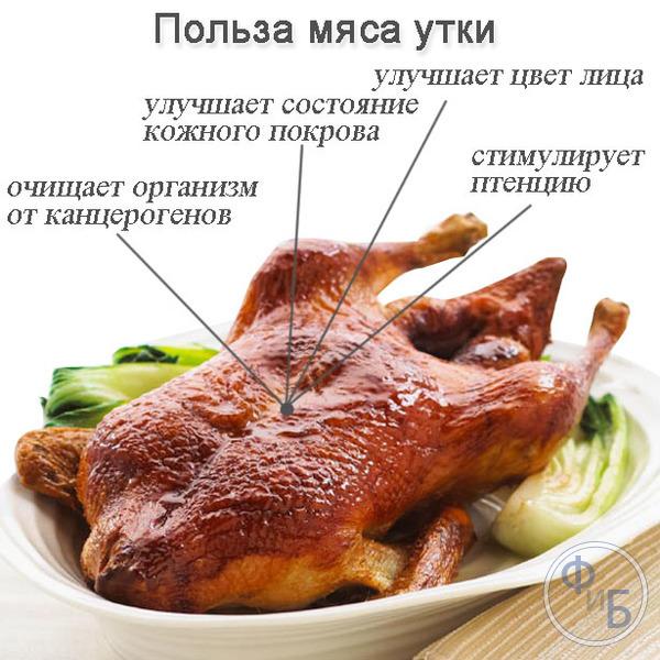 Утиное мясо – его польза