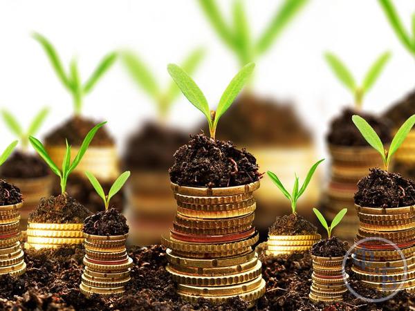 Факторы влияющие на рыночную стоимость земли