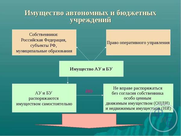 Разновидности имущества действующих бюджетных учреждений